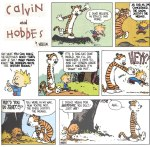 Calvin And Hobbes Ethics